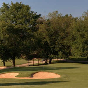 Course #1 Ravines at Cog Hill GCC: #8