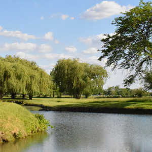 Willow Pond GC