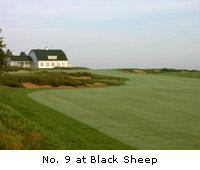 Black Sheep Course